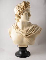 A moulded bust of Apollo on ebonised socle